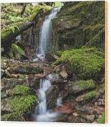 Centennial Falls Wood Print