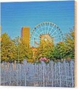 Centennial Fountains Wood Print