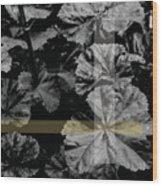 Centered Wood Print