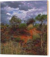 Central Australia I Wood Print