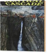 Central Cascade Bridge View Wood Print