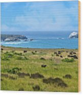 Central Coast Panorama - Hwy 1 Wood Print by Lynn Bauer
