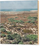 Central Coast Sand Dunes II Wood Print