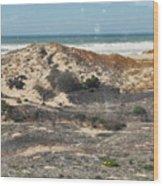 Central Coast Sand Dunes Wood Print
