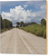 Central Florida Back Road Wood Print