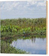 Central Florida Backwater Wood Print