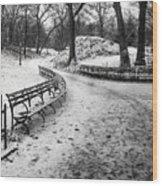 Central Park 3 Wood Print by Wayne Gill
