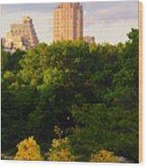 Central Park 7503 Wood Print