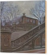 Central Park Bethesda Staircase Wood Print