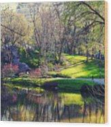 Central Park Colors Wood Print