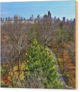 Central Park East Skyline Wood Print