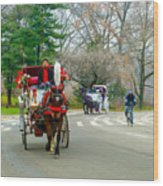 Central Park Horse And Buggy Rides New York City Wood Print