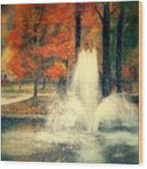 Central Park In Autumn Wood Print