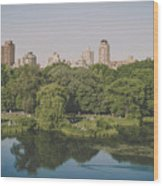 Central Park In Summer Wood Print