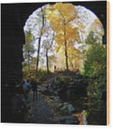 Central Park North Woods In The Fall Wood Print
