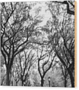 Central Park Nyc In Black And White Wood Print