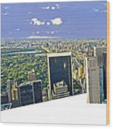 Central Park Panoramic Wood Print