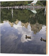 Central Park Pond With Two Ducks Wood Print by Madeline Ellis