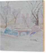 Central Park Record Early March Cold Circa 2007 Wood Print