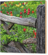 Central Park Shakespeare Garden New York City Ny Wooden Fence Wood Print