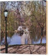 Central Park Sidewalk Wood Print