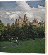 Central Park Skies Wood Print