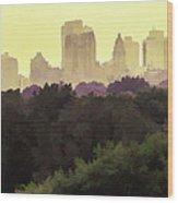 Central Park Skyline Wood Print