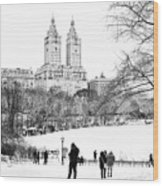 Central Park Snow Lakeside Wood Print