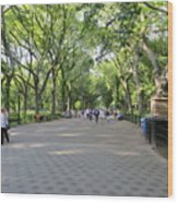 Central Park The Mall Wood Print