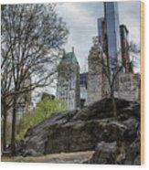Central Park Views  Wood Print