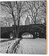 Central Park West And The San Remo Building  Wood Print by John Farnan
