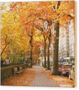 Central Park West Wood Print by Ariane Moshayedi