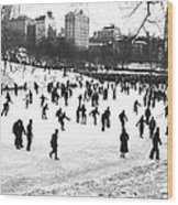Central Park Winter Carnival Wood Print