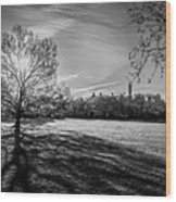 Central Park's Sheep Meadow - Bw Wood Print