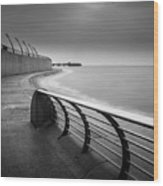Central Pier Blackpool Wood Print