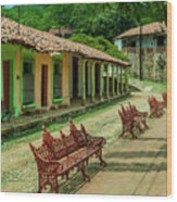 Central Plaza In Copala Wood Print