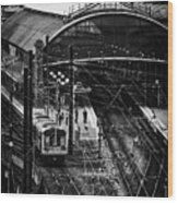 Central Station Fn0030 Wood Print