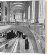 Central Station Milan 2 Wood Print