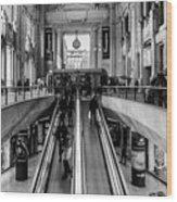 Central Station Milan Wood Print