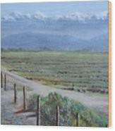Central Valley At Tulare Wood Print
