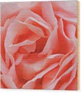 Centre - Rose Wood Print