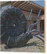 Centro De Investigaciones Paleontologicas Wood Print