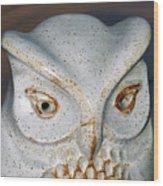 Ceramic Owl. Wood Print