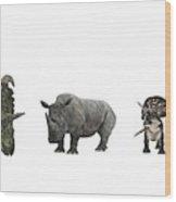 Cerapod Dinosaurs Compared To A Rhino Wood Print