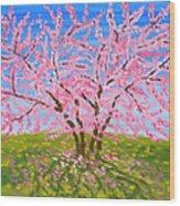 Cercis Tree, Oil Painting Wood Print