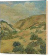 Cerillos Hills New Mexico Wood Print