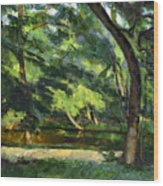 Cezanne: Etang, 1877 Wood Print