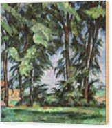 Cezanne: Trees, C1885-87 Wood Print