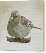 Chaffinch Wood Print