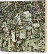 Chairs In Backyard Wood Print